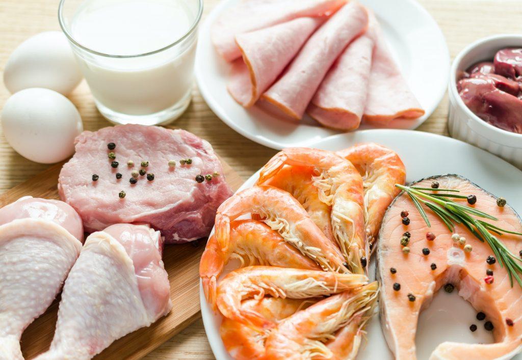 alimentos com proteína para o treino